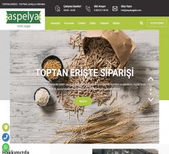 aspelyagida.com.tr